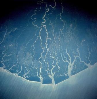 Delta rzeki Niger skrywa w sobie nieprzebrane bogactwo ropy naftowej. Delta Zanzy w
